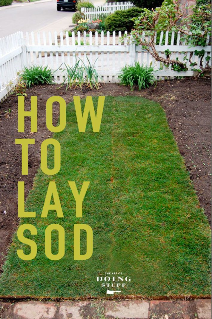 How To Lay Sod A Step By Step Guide To The Perfect Lawn How To