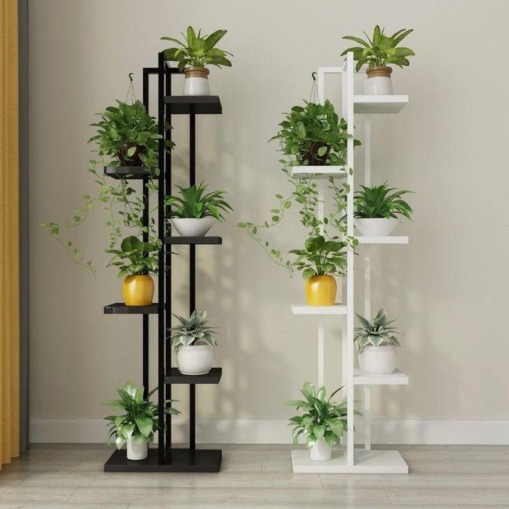 Interior Design Plants
