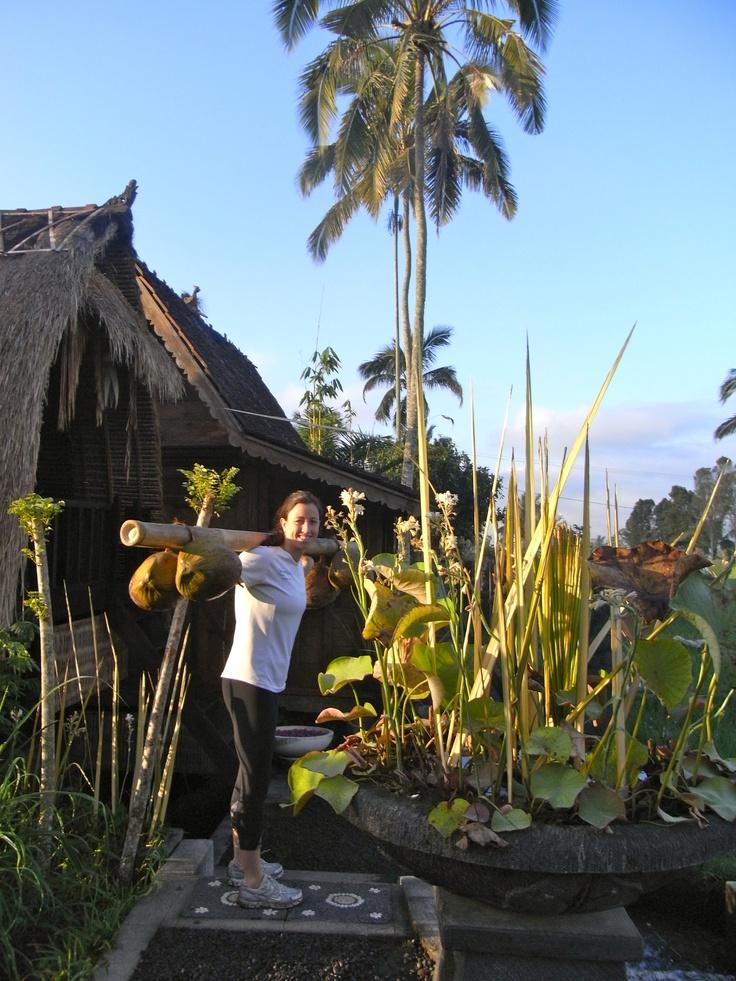 tropical training