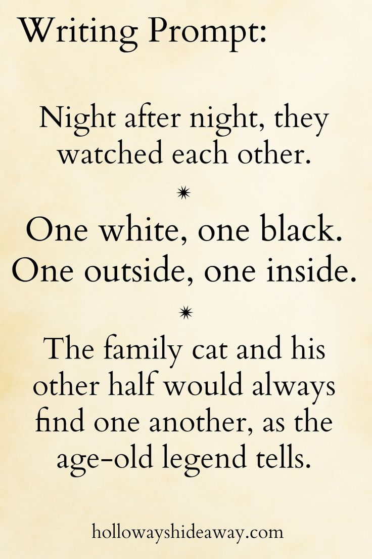 Random Writing Prompts-November 2016-Night after night, they watched each other. One white, one black. One outside, one inside. The family cat and his other half would always find one another, as the age-old legend tells.