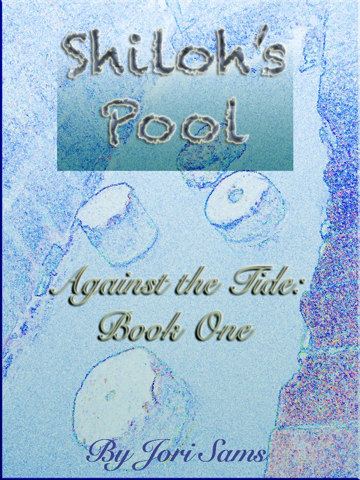 As Writeious Books has recently announced, the Shiloh's Pool ebook series has just been released. The first in a multi-book, multi-volume series, Against the Tide: Book One is the first ebook of the journey. Get it now for 99 cents at Writeious Books. Read the author interview at Wordpress on SamSword.