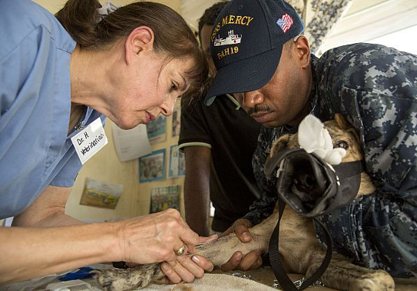 Doctor Cynthia Hoobler, a veterinarian from World Vets, works with Hospital Corpsman 1st Class Alfredo Winter to prepare a feral dog for surgery during a veterinarian clinic at the Fiji Animal Clinic during Pacific Partnership 2015.