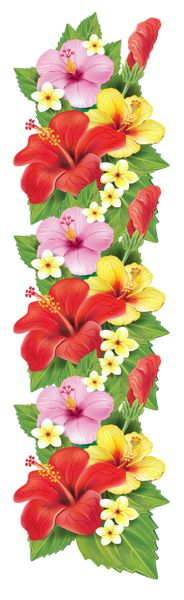 Exotic Flowers Decoration PNG Clipart
