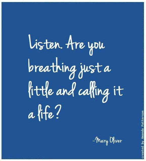 Mary Oliver Love Quotes: 25+ Best Mary Oliver Quotes Ideas On Pinterest