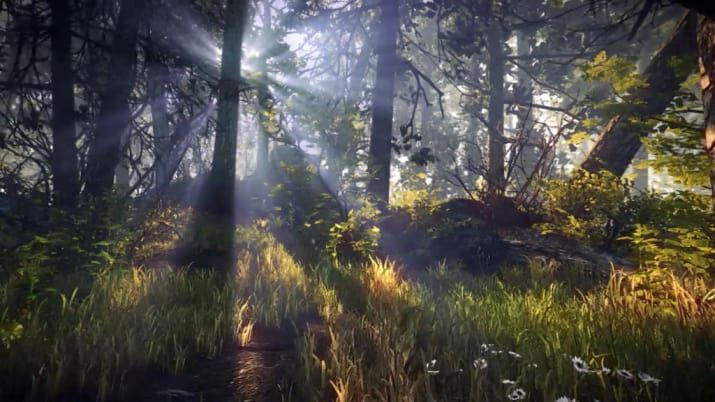 36 Beautiful Landscapes That Prove That Video Games Are Art
