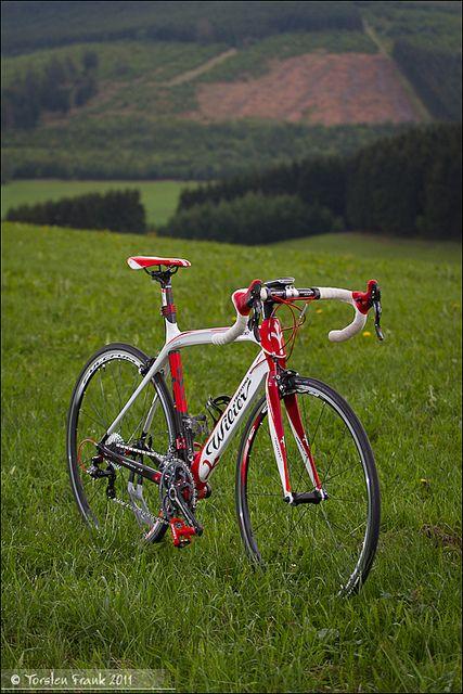 Wilier Triestina GranTurismo - one of the most beautiful road bikes. :) I want one sooo bad!!!!!!