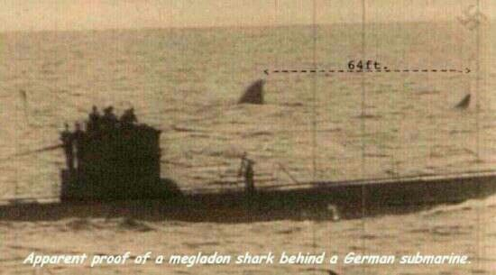 Apparant proof of a megladon shark behind a German submarine,this would make Jaws look like a baby shark!