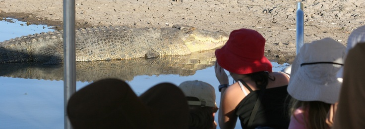 Croc viewing on the Mary River, near Kakadu National Park http://www.realaussieadventures.com/tours/northern-territory/darwin/4-day-4wd-brolga-dreaming-top-end-tour/