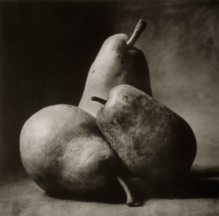 Three Italian Pears ©Cy DeCosse Fine Art Photography. The Beauty of Food Collection. Limited edition platinum-palladium print. CyDeCosse.com #photography #art #food
