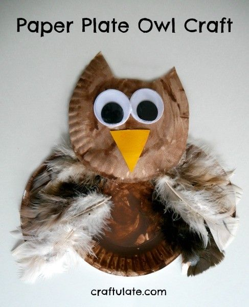 This paper plate owl is such a lovely craft for young kids to make!