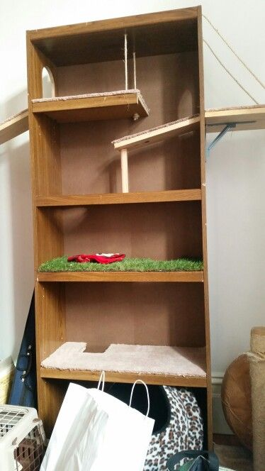 Cute, Cheap, Rustic Cat Tower.  This is made from a simple bookshelf, a few cut outs and some rope. My cats love being up high! They would love this!