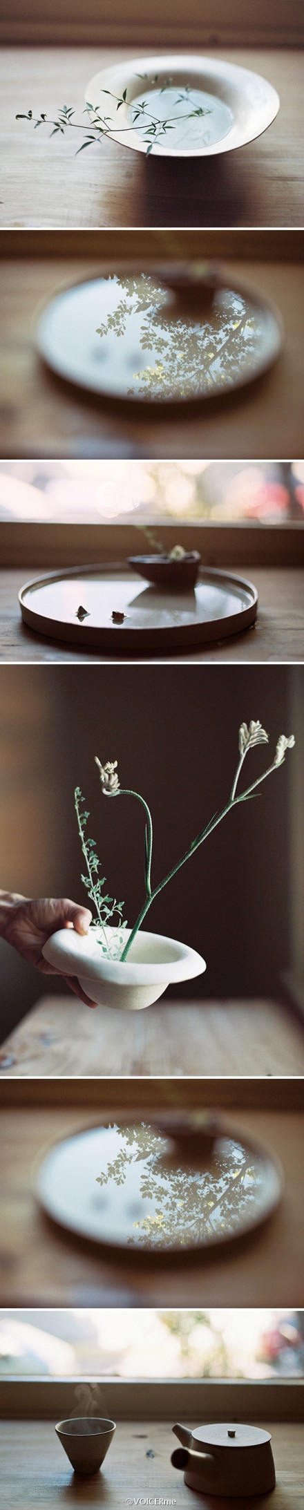 摄影|恬淡静谧,温暖优雅,是春日的香气,是生活的况味。(YOKO OZAWA: KOMOREBI, photographs)