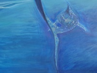 Whale Shark 7  76cm x 102cm  Mixed media on canvas  $SOLD