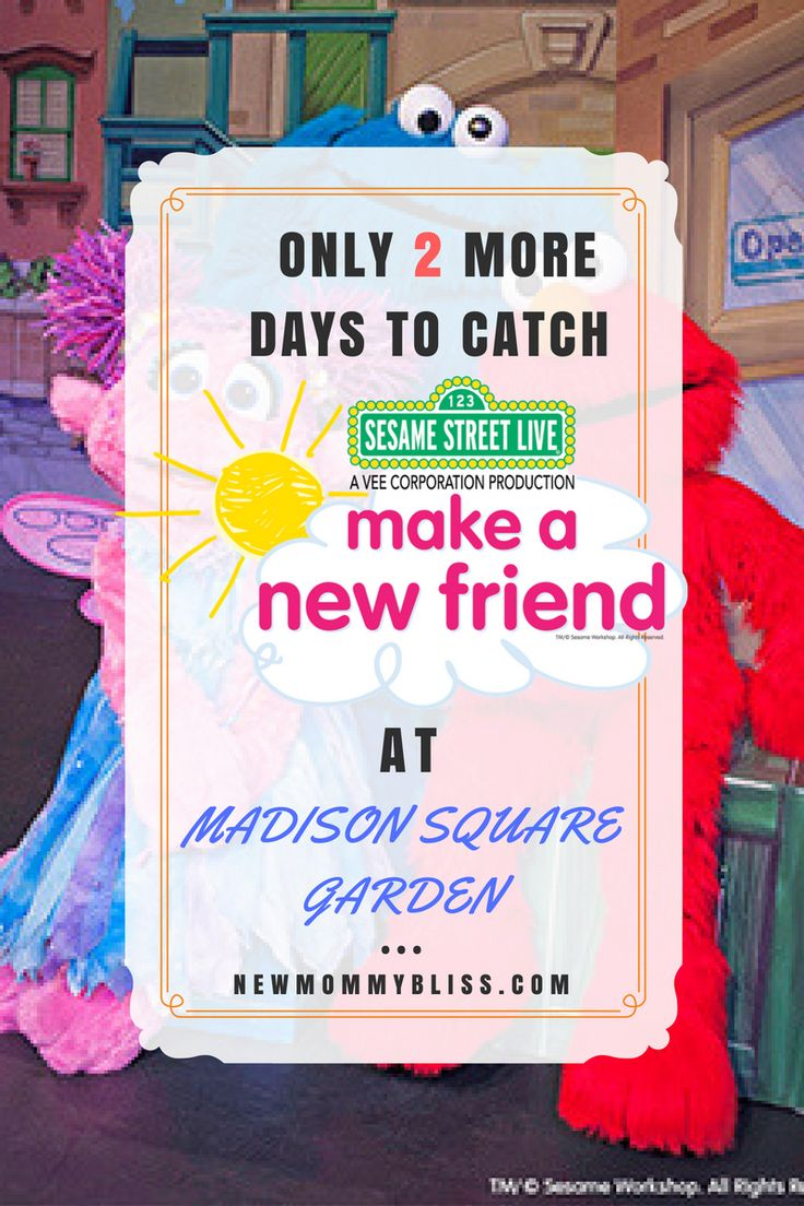 10 best ideas about madison square garden on pinterest - Sesame street madison square garden ...