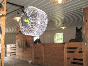 Is your barn cool? Improve your horses' health and increase their comfort level with our horse stall fans.