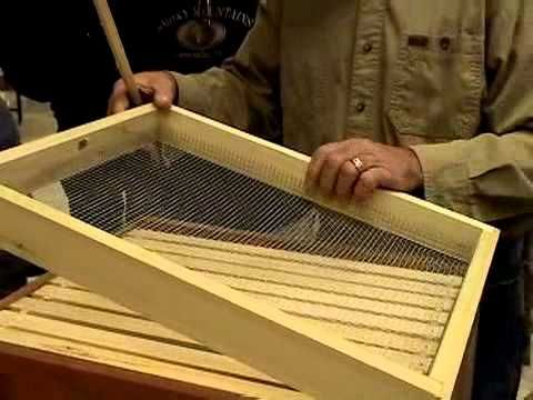 Make a candy board for overwintering honey bees
