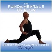 Learn the basics of Vinyasa Flow.
