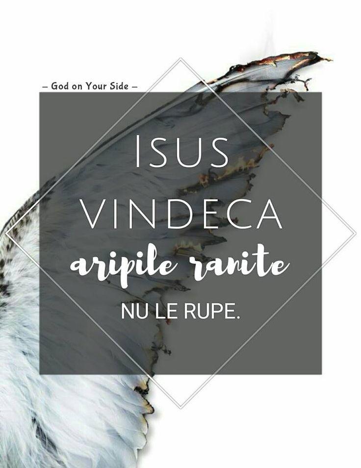 L'immagine può contenere: sMS, ali. Gesù