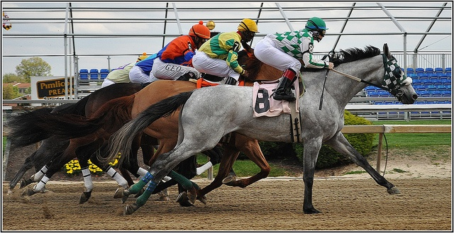 Pimlico Preakness Meet Opening Day April 17, 2010