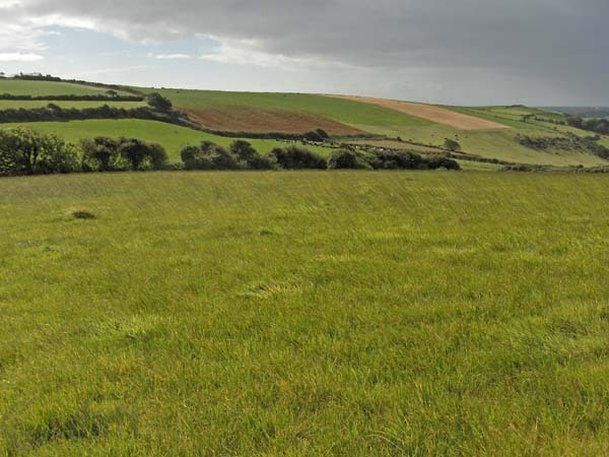 Balteenbrack, Ardfield, Clonakilty, Co. Cork - agricultural land for sale at e120,000 from Hodnett Forde Property Services