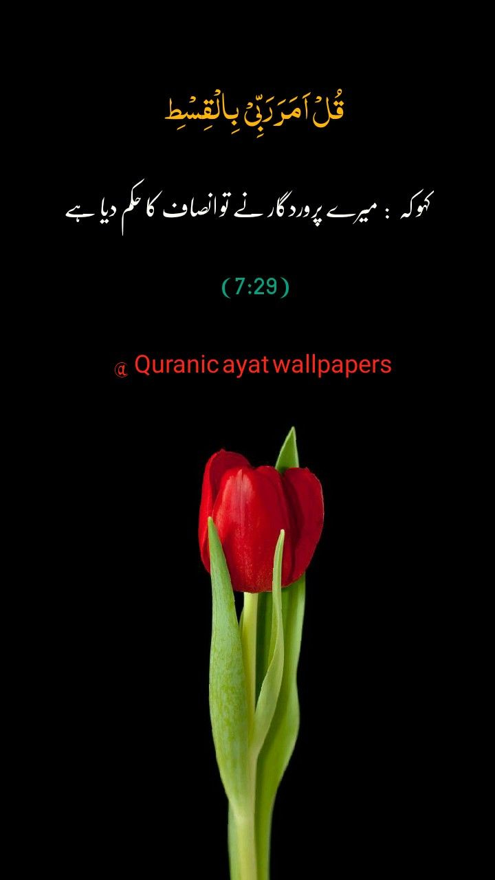 Quranic Ayat Wallpapers In 2020 Quran Quotes Verses Quran Quotes Holy Quran