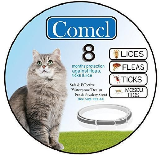 Cat Flea And Tick Prevention