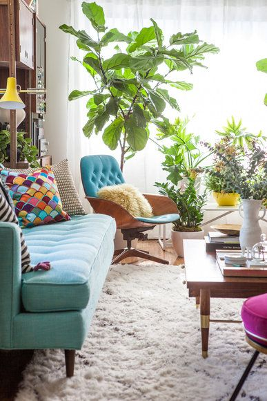 """The greenery creates a """"jungle"""" at the end of a long, narrow living room. Henderson reupholstered the couch in a thick aqua blue linen and added a vintage Plycraft chair with its original upholstery, bought from a flea market."""