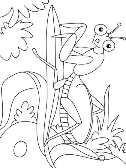 Leaf mentis at ease coloring pages Download Free Leaf