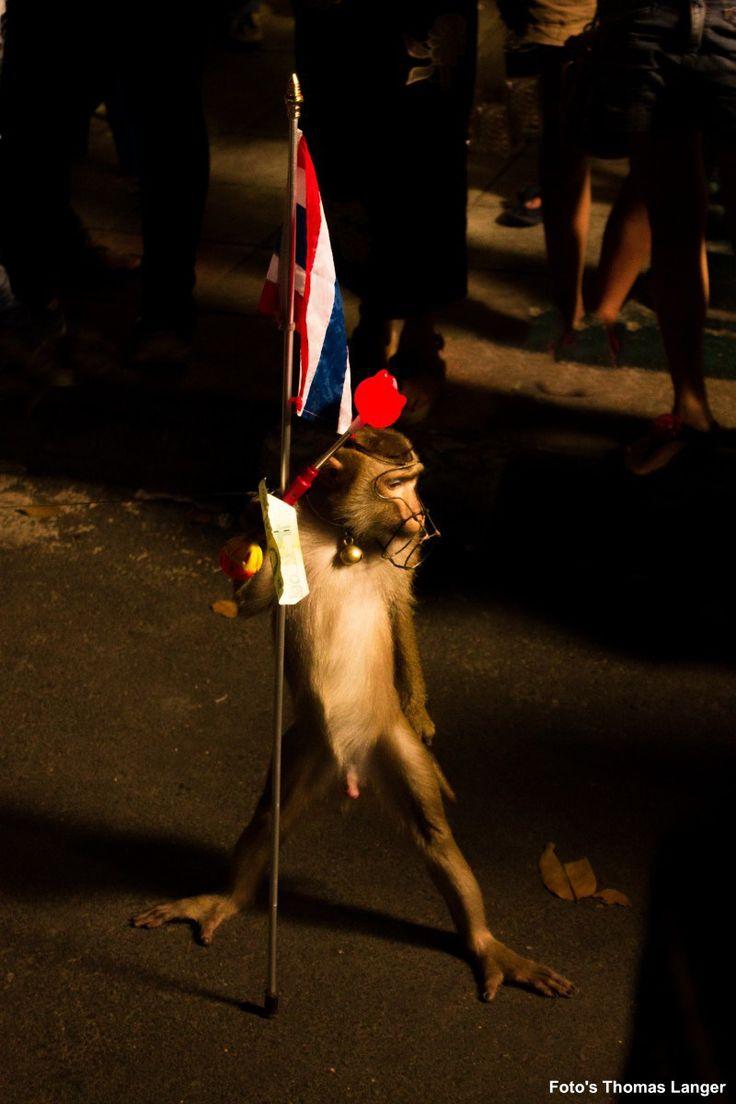 un singe la nuit porteur de drapeau