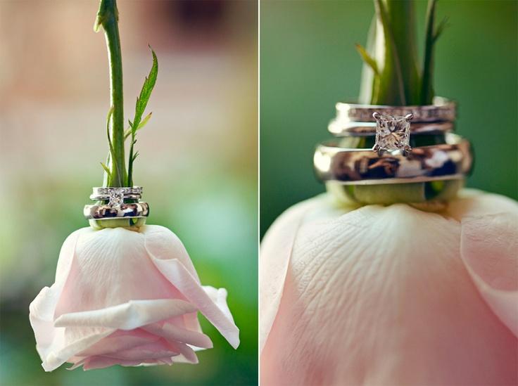 FLOWER & RINGS