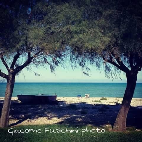#buongiornopineto #pineto #vacanze #mare #abruzzo www.pinetovacanza.it
