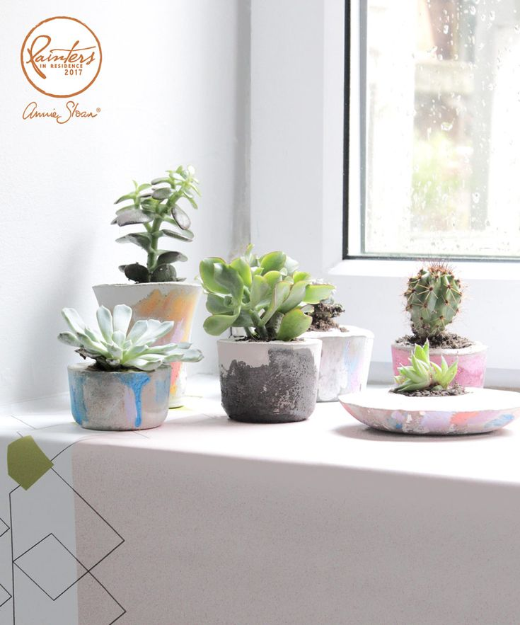 Make your own Chalk Paint® concrete pots, with Annie Sloan's Painter in Residence, Hester van Overbeek! This easy step by step guide will show you how to mould, make and paint your own mini planters, to fill with succulents and cacti.