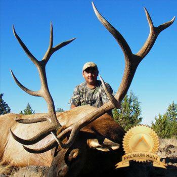 Oregon Archery Elk Mule Deer Combo Hunt width=