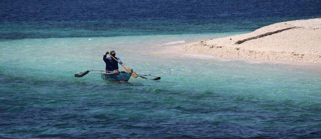Cebu and Blue Sea