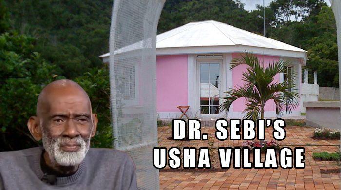 Sebi Review