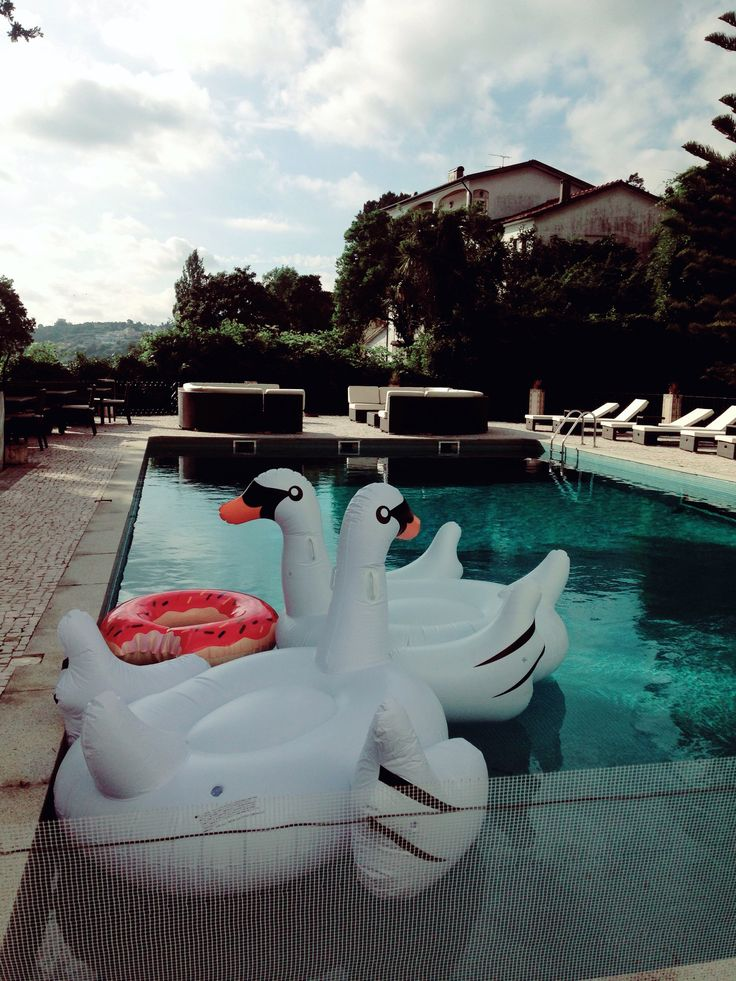 #Covet House pool with inflatable swans. Know more http://www.covetlounge.net/