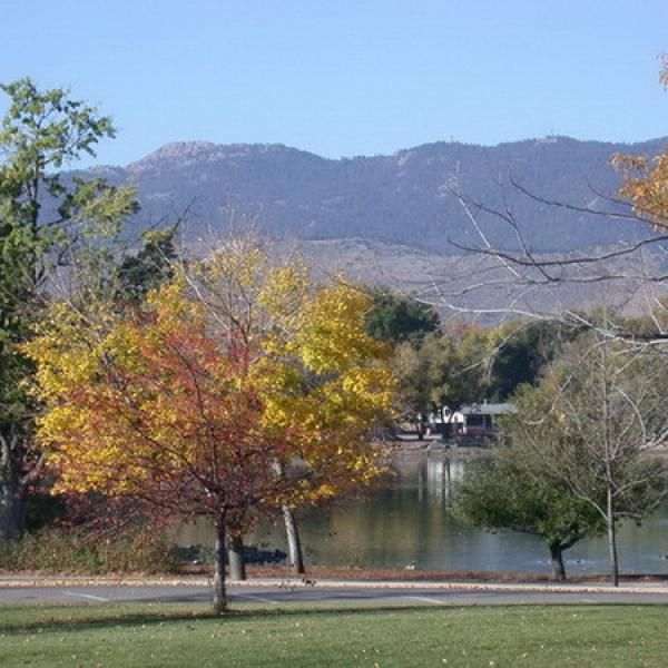 Fort Collins Colorado: 93 Best Fall Is Perfect In Fort Collins, CO Images On