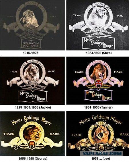 Metro Goldwyn Mayer со Львом