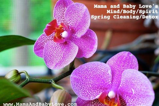MIND/BODY/SPIRIT SPRING CLEANING/DETOX