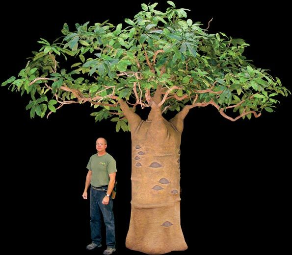 Thick trunk and stunningly lifelike foliage, this ...