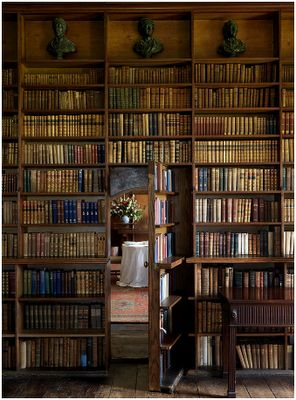 A secret door is also apparently a necessity. However I think we would do something other than this... although the bookshelf is a good idea!