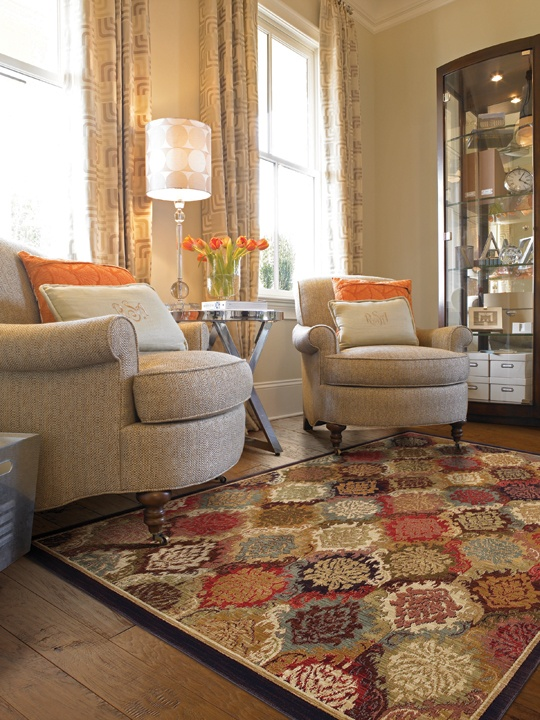 Cooper Hill Area Rug Hgtv Home Flooring By Shaw