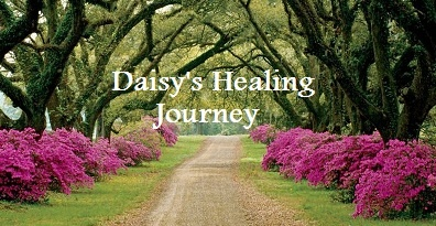 Dollars for Daisy:  Hospital and Treatment