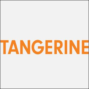 Tangerine Digital launches Content Solution for Banking, Financial Services and Insurance. Read Here http://goo.gl/fUPrDX