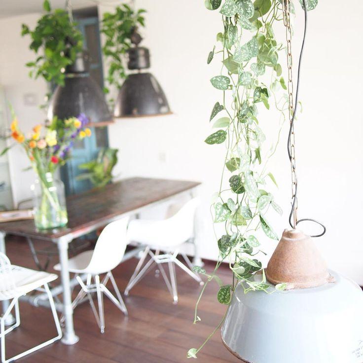 """#interior #instahome #planten #plants #zomer #bloomon #bloemen #vintagelab15 #vintage #bloemen #lamp#lamps"""""""