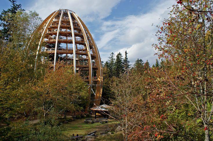 Der Baumwipfelpfad Bayerischer Wald                                                                                                                                                                                 Mehr