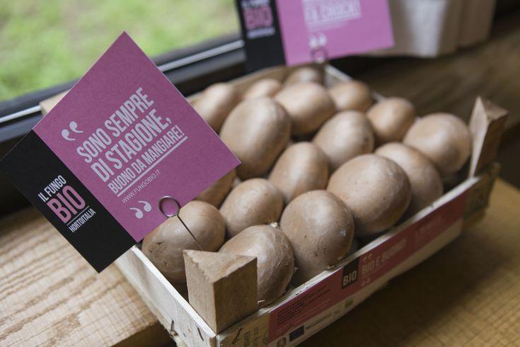 Il Fungo Bio di Hortoitalia - Alimenti bio - Cucina Naturale - Corporate image, communication design strategy and photos/video by labbraindesign.com
