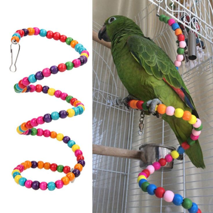 Multicolor Beads Birds Cage Toys
