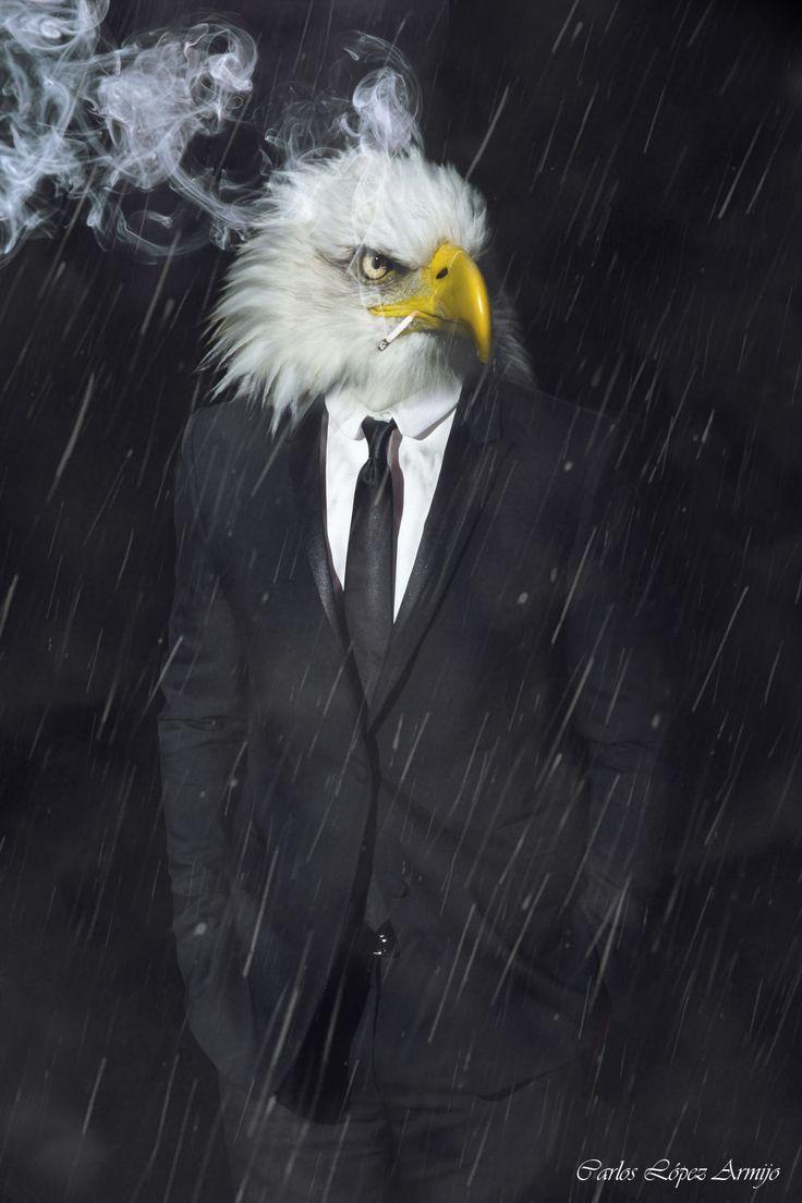 Smoking eagle