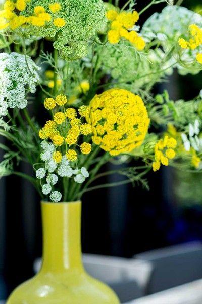 Natural Yellow - Silk-ka